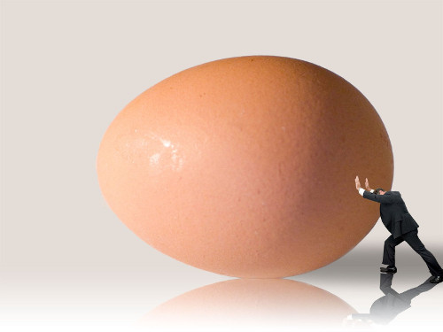 man-vs-egg
